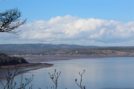 A great view of the Parrsboro coastline from the Partridge Island hiking trail.  This is also the Bay of Fundy.....so it looks like low tide!