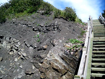 Descending the steep stairs to he Joggins Fossil Cliffs and beach area can be intimidating.  The cliffs are fabulous!