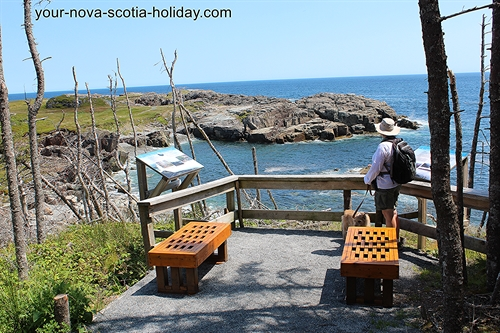 There are a couple of informational panels on the Louisbourg Lighthouse trail along with benches.  The panels do a great job of describing the unique history of this coastline.