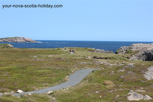 A great view of the trail as it heads towards the coastline.  The Louisbourg Lighthouse trail allows you to get very close to the coastline.