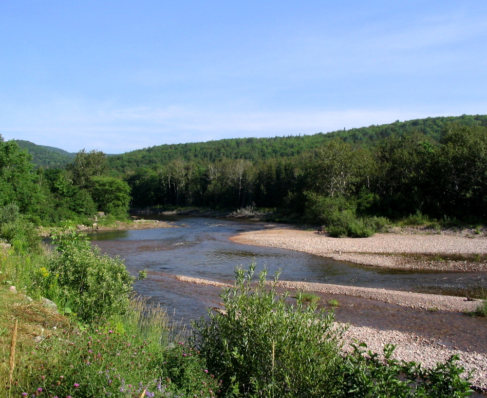 The Margaree River is the best place in Cape Breton for salmon fishing.