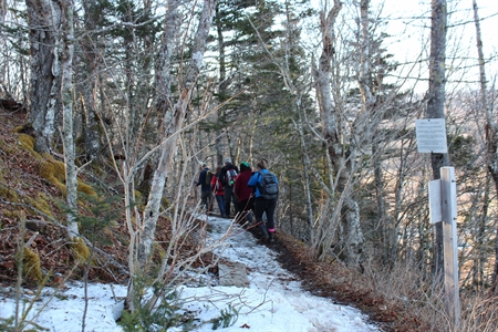Springtime on the Partridge Island hiking trail.  Lots of snow and ice but we made it to enjoy great views of the Bay of Fundy!