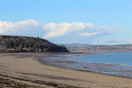 This is the beach that will lead you to the hiking trail on Partridge Island (Parrsboro, Nova Scotia). Do you like fossil hunting and beachcombing?  This beach is the perfect place!