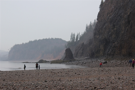 The beach at Wasson Bluff is full of treasures.  The rocks here are millions of years old.  They are rich in fossils and minerals.  The cliffs are constantly being eroded by the Bay of Fundy tides.