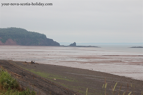 A great view of the coastline at low tide at the Five Islands Lighthouse Park on the Bay of Fundy in Nova Scotia.