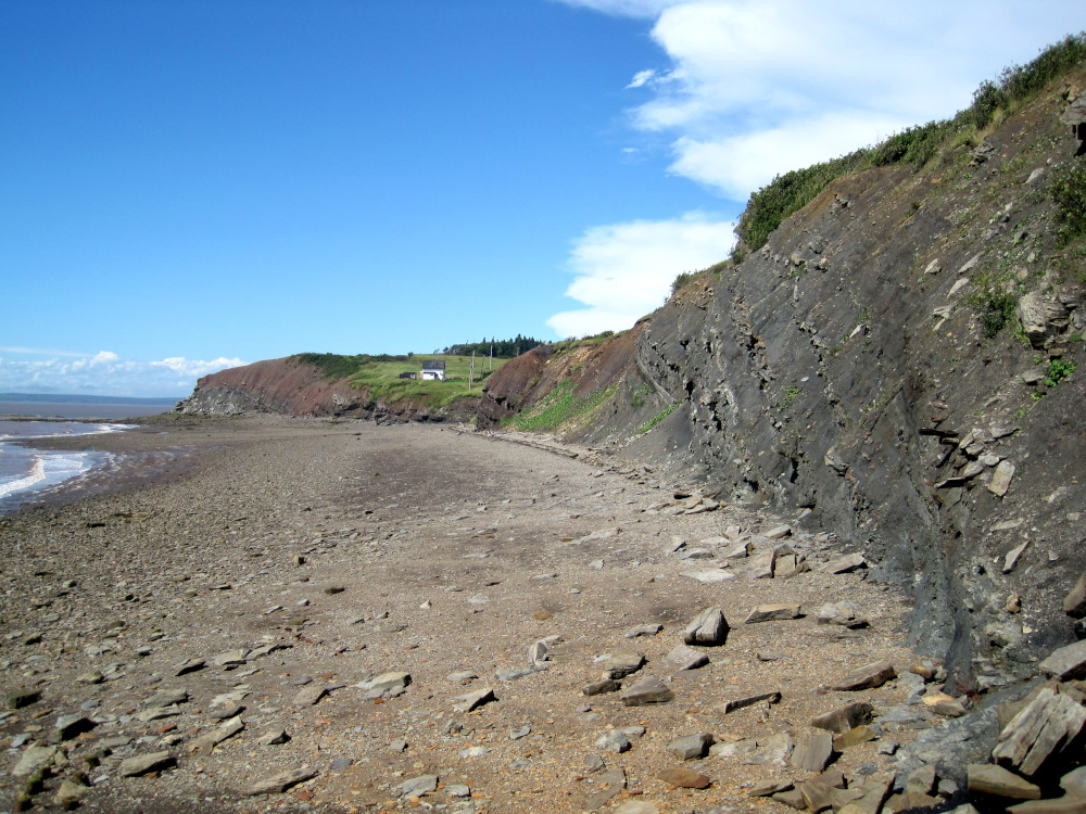This is the Joggins Fossil Cliffs along the Bay of Fundy in Nova Scotia. The Fundy tides withdraw twice daily leaving more boulders & rocks to fall and more fossils to be found.