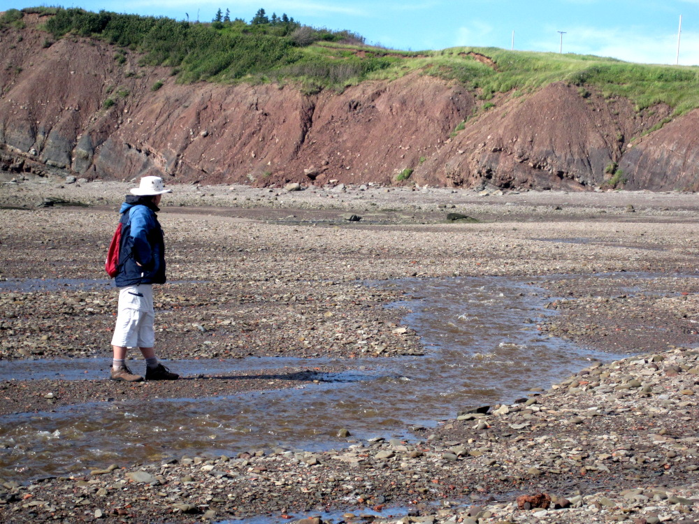 This is me roaming the rocky beach at the Joggins Fossil Cliffs in Nova Scotia.  A truly remarkable place.