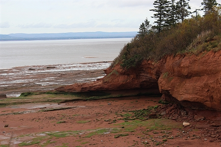 Another great view from Burntcoat Head.  This is Cobequid Bay in the background with the Upper Economy area in the distance.