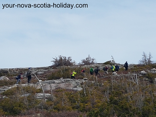 The Mica Hill hiking trail is a gradual climb on the plateau in the Cape Breton Highlands National Park