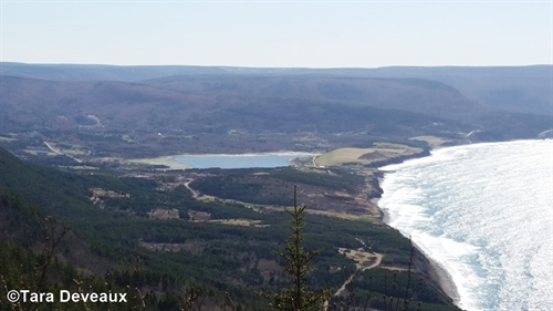 This is the view of Bay of St. Lawrence as you climb the mountain to get to Money Point on the other side.
