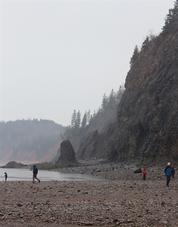 A dramatic view of the cliffs at Wasson Bluff.  The bluff itself is just beyond these cliffs.