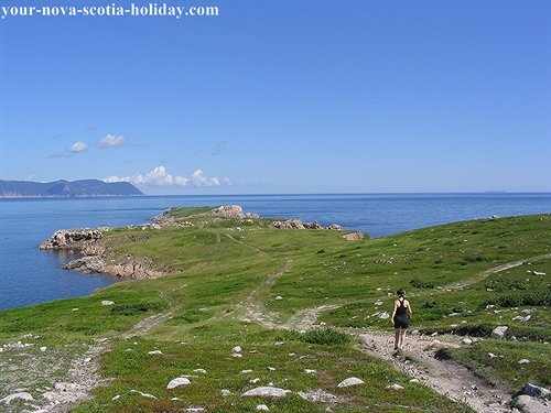 A great picture of the hiking trail on the cliffs at White Point in northern Cape Breton.